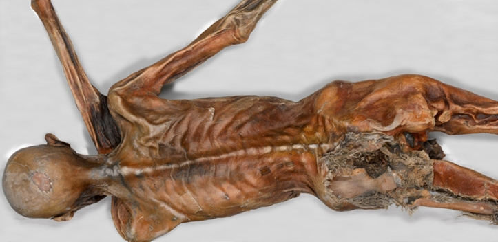 otzi-curse-facts